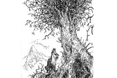 albero_web